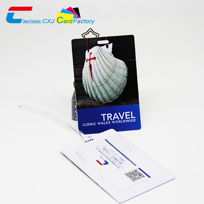 Large Travel Cards