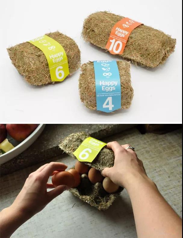 Environmental protection egg box